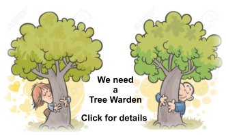 We need a  Tree Warden Click for details
